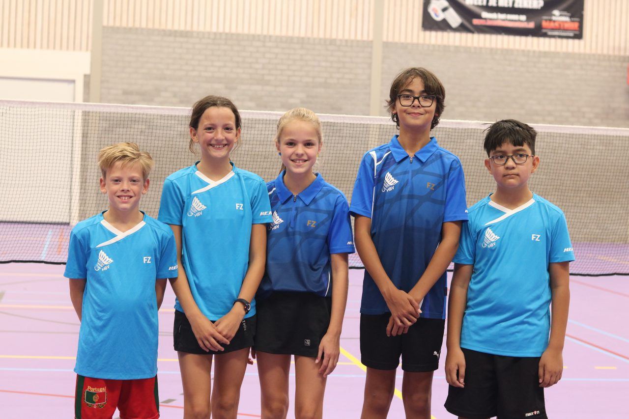 Hbv Badminton